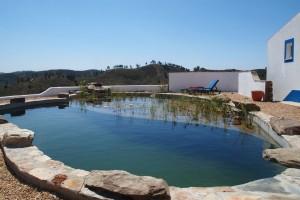 pool August 2014